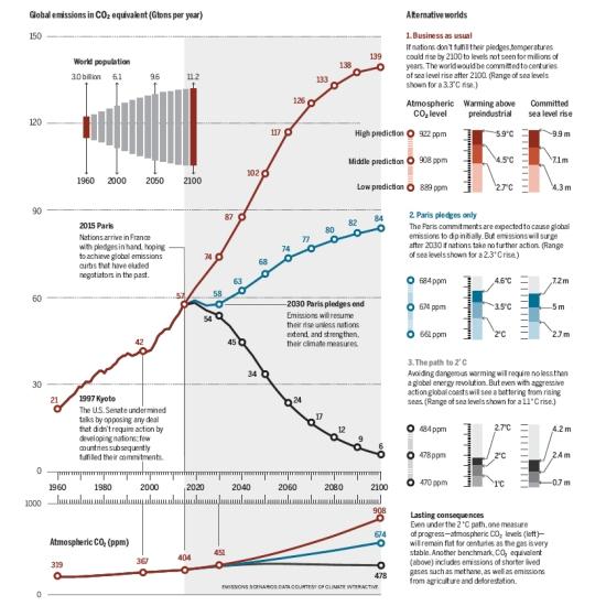 grafico emissioni